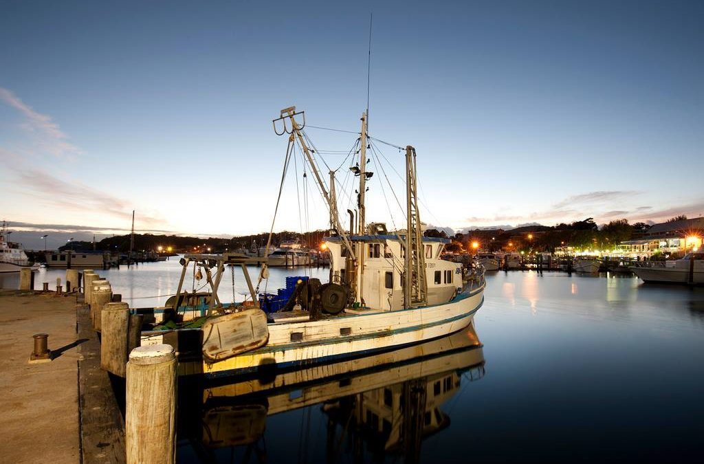 Newcastle seafood industry announced for Trusted Advocates network pilot